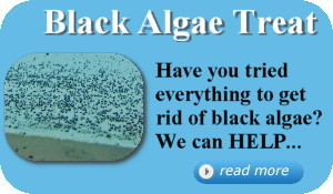 Black Algae Treat